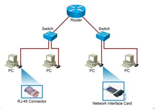 Common Physical Components of a Network